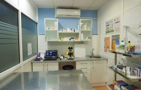 Consulta Clínica Veterinaria San Gabriel