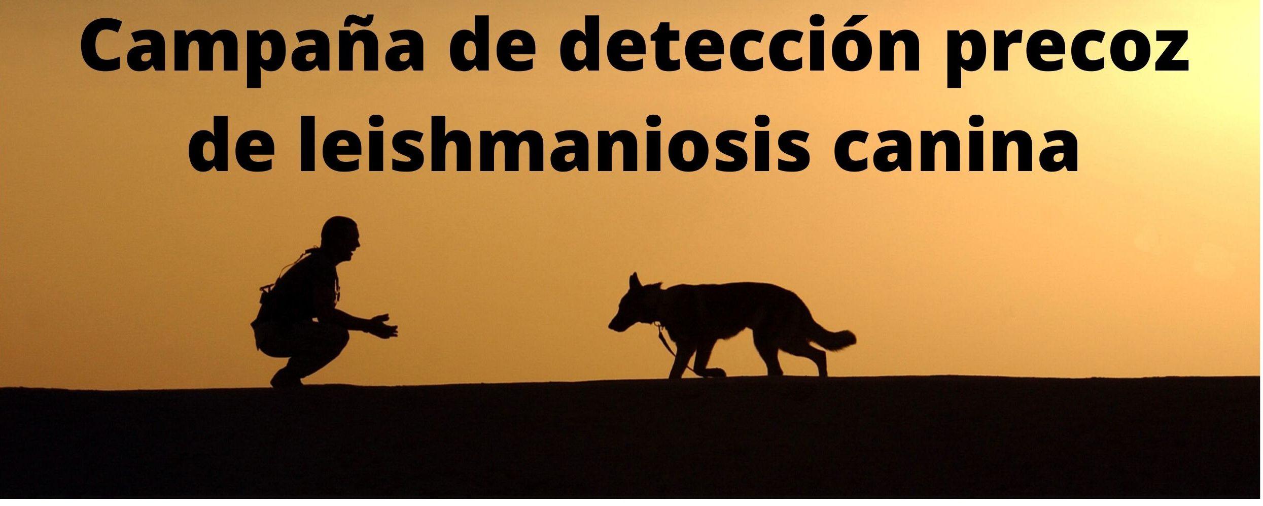 Campaña de detección precoz de leishmaniosis canina