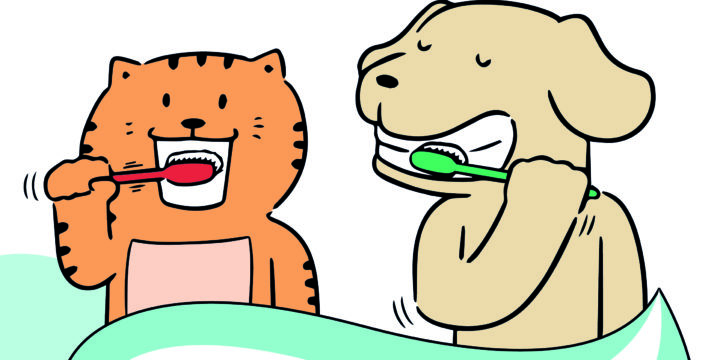 Campaña de higiene oral